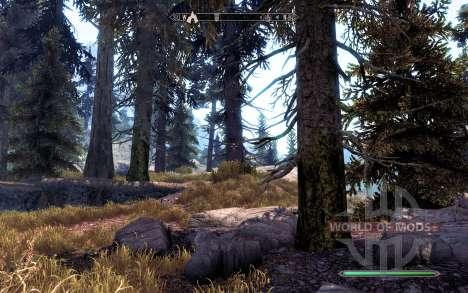 Реалистичные сосны для Skyrim пятый скриншот