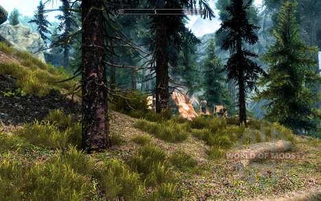 Реалистичные сосны для Skyrim третий скриншот