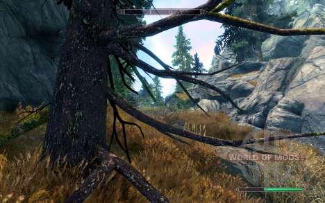 Реалистичные сосны для Skyrim второй скриншот