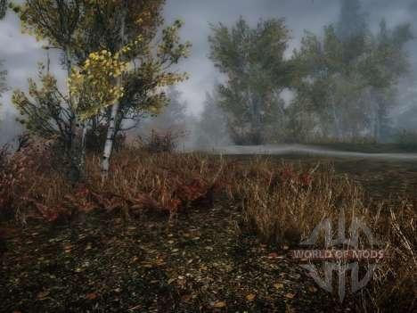 More grass - больше травы для Skyrim второй скриншот