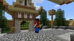 Инструменты на спине для Minecraft