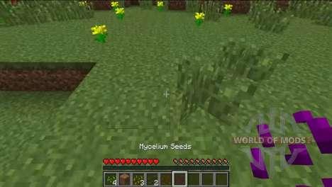 Различные семена для Minecraft