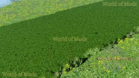 Новые текстуры скошенной травы и сена для Farming Simulator 2015