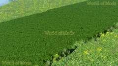 Новые текстуры скошенной травы и сена