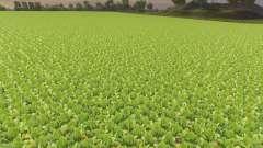 Отключение увядания культур для Farming Simulator 2013