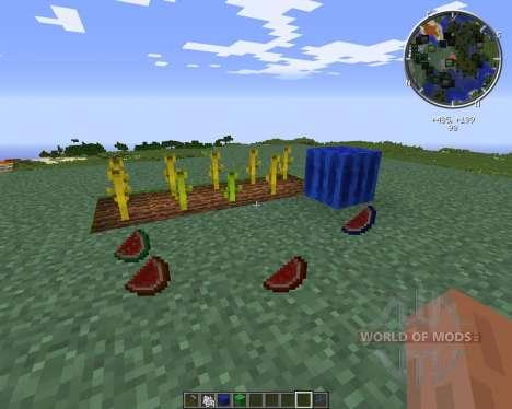 Elemental Melons для Minecraft