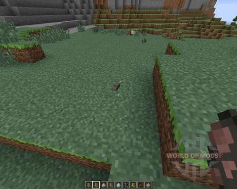 More Nature для Minecraft