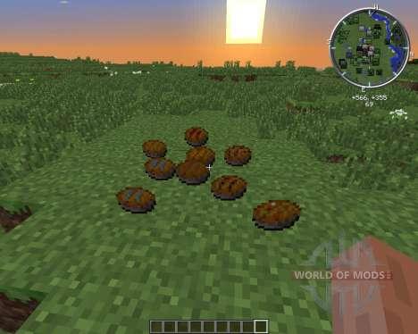PieCraft для Minecraft