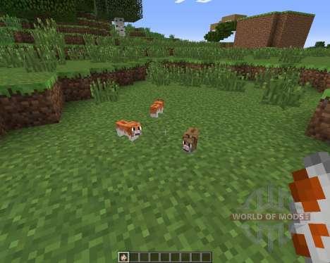 Invincible Hamster для Minecraft