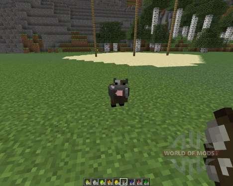 Mo Chickens для Minecraft