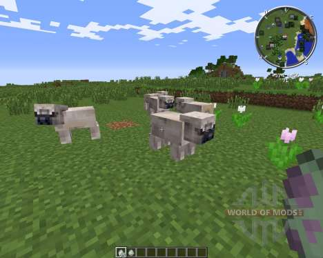 Pug Life для Minecraft