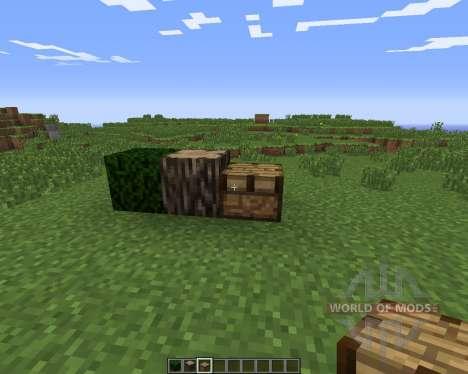 Psychedelicraft для Minecraft