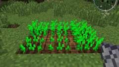 MC Turnip для Minecraft