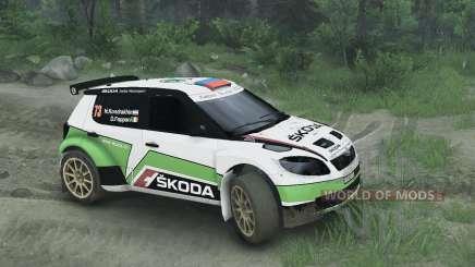 Škoda Fabia S2000 для Spin Tires