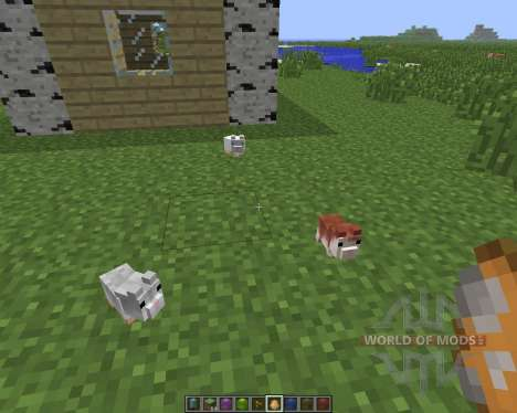 Hamsterrific [1.6.4] для Minecraft