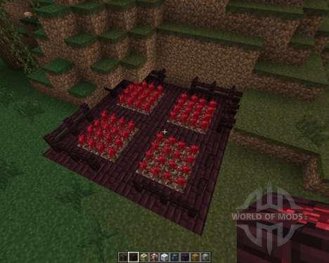 iHouse [1.7.2] для Minecraft
