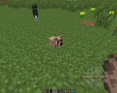 Copious Dogs [1.6.4] для Minecraft