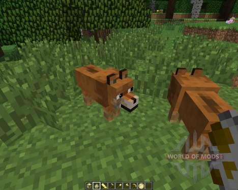Doge [1.6.4] для Minecraft
