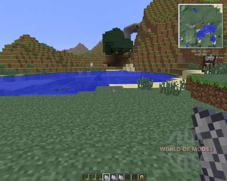 Reis Minimap [1.6.4] для Minecraft