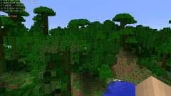Village Info [1.6.4] для Minecraft