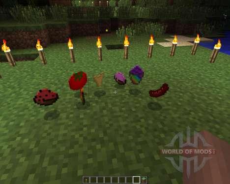 Food Plus [1.6.2] для Minecraft