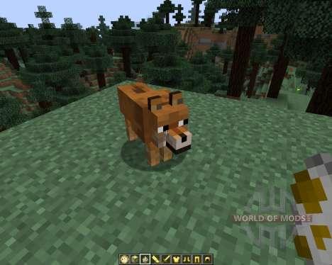 Doge [1.7.2] для Minecraft