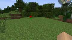RadarBro [1.7.2] для Minecraft