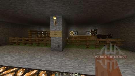 Resource Pack Viewing Museum для Minecraft