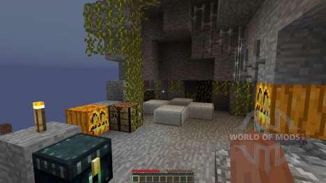 Witch Party для Minecraft