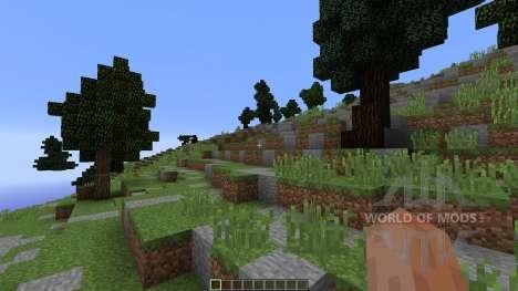 Rvaosk для Minecraft