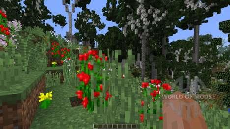 Birch Isle Tree Pack Featurette для Minecraft