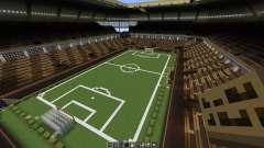 Soccer Football Arena