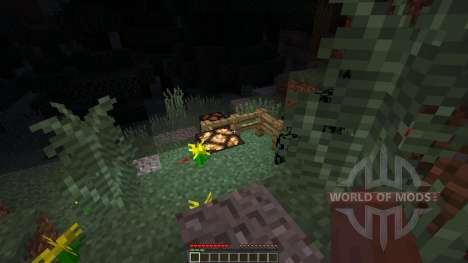 The Rise of The Bokor для Minecraft