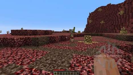 The new nether для Minecraft