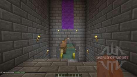 Castle Crashers для Minecraft