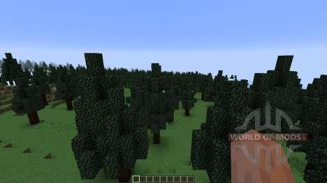 Pine Valley Minecraft Custom Terrain для Minecraft