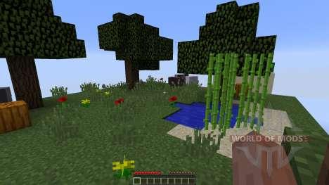Chunks для Minecraft