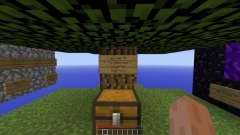 Adventure Skylands Survival