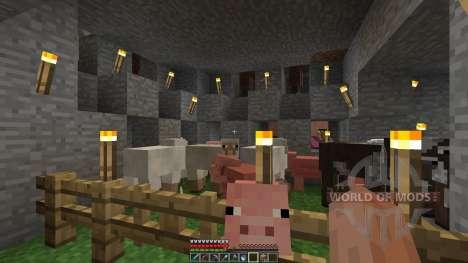 Pimp my saurvival для Minecraft