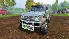 Mercedes-Benz G65 AMG 6x6 [passion paysage]