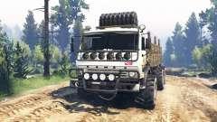КамАЗ-43114 v3.0 для Spin Tires