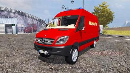 Mercedes-Benz Sprinter 311 CDI (Br.906) для Farming Simulator 2013