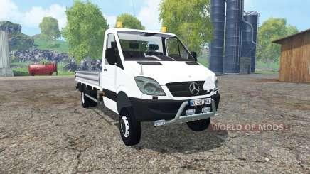 Mercedes-Benz Sprinter 316 NGT (Br.906) для Farming Simulator 2015