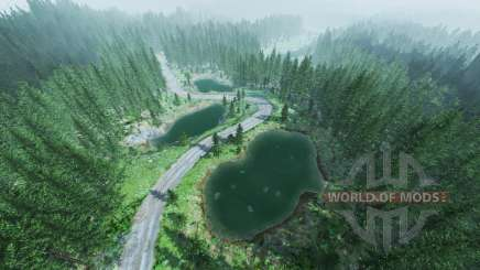 Rally forest v1.5 для BeamNG Drive
