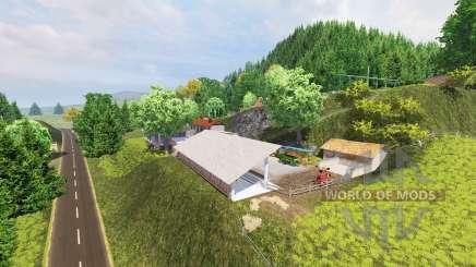 WTS для Farming Simulator 2013
