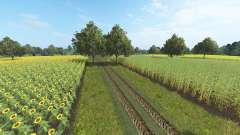 Borkowice для Farming Simulator 2017