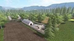 Настоящая польская деревня v2.0 для Farming Simulator 2017