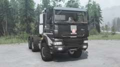 Tatra Phoenix T158-8P5 6x6 2011 для MudRunner