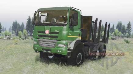 Tatra Phoenix T158-8P5 6x6 2011 v1.2 для Spin Tires