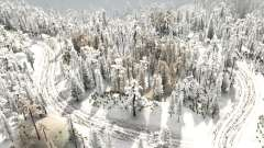 Snow Test 6 для MudRunner